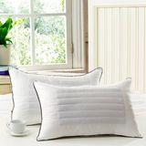 家用枕头荞麦壳硬单人全棉学生宿舍枕芯一对成人护颈保健枕头包邮