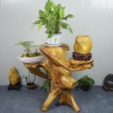 天然根雕凳子杉木树墩原木树根树桩木头墩子摆件底座茶几坐凳花架