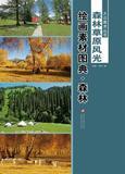 包邮 大众美术丛书—— 森林草原风光绘画素材图典(全二册) 温