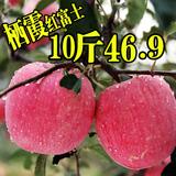 烟台苹果山东栖霞红富士 新鲜脆甜多汁水果十斤装80MM包邮