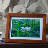 实木相框架挂墙6 7 8 10 12寸A4木质相框摆台创意十字绣画框批发