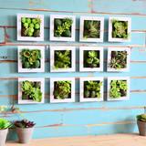 现代田园立体墙饰仿真多肉植物墙上装饰品壁挂饰客厅墙面壁饰挂件