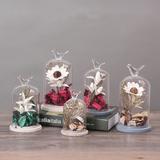 ZAKKA创意复古实木玻璃罩摆件家居客厅永生花玻璃装饰品生日礼物