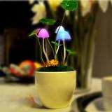 日礼物光控阿凡达蘑菇灯陶瓷花盆小夜灯桌面小台灯创意家居灯饰生