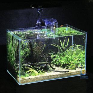 玻璃鱼缸钢琴简谱