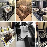 高档欧式加厚茶几地毯客厅地毯家用卧室满铺床边宜家羊毛晴纶地毯