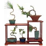 包邮红木实木花架盆景架木制多层客厅室内花盆架子微型盆景展示架
