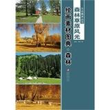 正版!大众美术丛书—— 森林草原风光绘画素材图典(全二册)