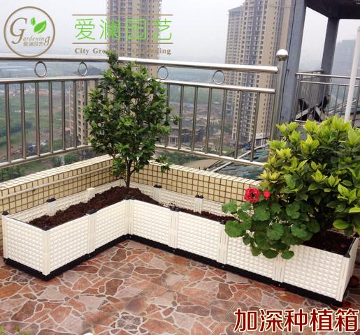 加深种植箱长方形大花盆家庭阳台菜园种菜盆/适合果树图片