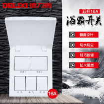 Delixi Bath Bully Switch Five open sliding cover general bathroom waterproof five-in-all bathroom air Heating switch panel
