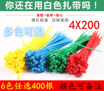 Color nylon ties 4*200mm plastic lashing straps red green yellow blue strangled dog ties clips
