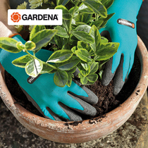 German import Jiading garden protective gloves garden flower pull grass flower garden vegetables hand waterproof.