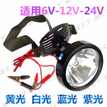 6V 24V headlight yellow light high power LED strong light DC 12V battery light lamp night fishing blue light