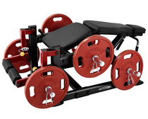 Original authentic international BODY-SOLID brand importers with hanging piece bent leg training machine PLLC