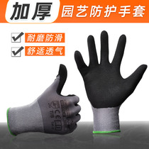 Garden gloves anti-sting waterproof flower flowers catch up with the altitude grass gloves monthly digging garden vegetable anti-tie gloves.