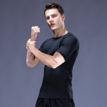Tights mens long-sleeved quick-drying clothes fitness suit sports suit running basketball training on fitness tights