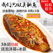 (3) smelly Mandarin fish smelly osmanthus net 8-9 two authentic Anhui Huangshan specialty Huizhou smelly Mandarin fish vacuum equipment