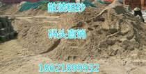 In the coarse sand fine sand cement yellow sand melon seeds stone Shanghai Wharf direct sales