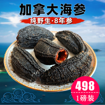 Canadian sea cucumber Arctic cucumber imported sea cucumber dry goods deep red sea cucumber wild 454 grams of pregnant women dry sea cucumber