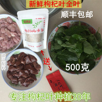 Southern leaves fresh leaves lettuce full leaf 1 jin Shunfeng to send stew soup bag and leaves tea.