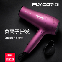 Feike electric hair dryer home barber shop dedicated high-power negative ion hair care non-injury hair salon silent blowing barrel
