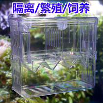 Fish tank large pneumatic acrylic isolation box hatch box breeding box Peacock fish production room fry pneumatic box