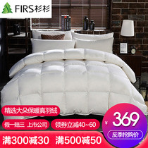 Duvet thickened winter is a five-star hotel warm quilt quilt core single double bed white duck down quilt winter authentic