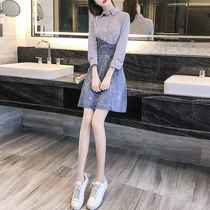 Womens 2019 new tide dress early autumn net red autumn temperament early autumn popular spring skirt female autumn