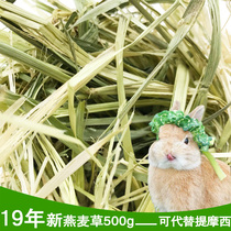 Gold oat grass O wheat 500g rabbit hay lotus root Chinchilla hay alternative Timothy hay