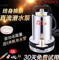 Pump mute flower small household DC submersible pump Shanghai People pump factory high-voltage electric vehicle agricultural