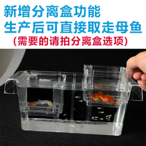 Peacock Fish Hatchery box multifunctional fish fry incubator cylinder outside acrylic female fish breeding box bucket fish isolated fish tank