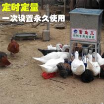 Automatic chicken feeder feeder automatic new generation poultry under the light gray reservation capacity 100 catties chicken duck