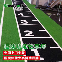 Green ball gym private parish artificial lawn studio sledge tasteless plastic custom black turf decoration