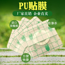 pu film imperméable transdermal patch plaster patch trois jours Acupuncture Point applicateur navel blank patch PU bande