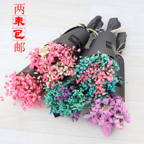 Dried flower carnation Campanula gypsophila home furnishings fresh and elegant bouquet handmade diy production material package