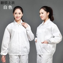 Anti-static clothing overalls white blue shirt split female short paragraph protection dust-free clothes mens pants Kang