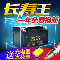 Motorcycle battery 12V universal maintenance-free moped 125 wisp pedal curved beam car dry battery battery 9a