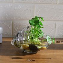Wall creative coffee table bouquet vase ornaments hanging bottle flower desk simple flower micro-landscape room hanging