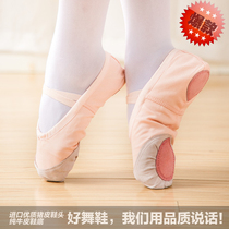 Childrens dance shoes female soft bottom practice shoes male adult body cat dance shoes red girls Chinese ballet shoes