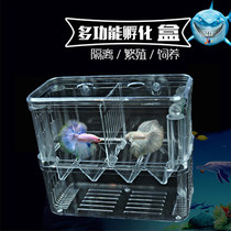 Fish Tank multifunctional breeding box acrylic small tropical fish incubator aquarium fish disease isolation box incubation box