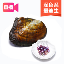 Diana jewelry quality Edison (blueberry clam) freshwater loose beads live open clam take Pearl