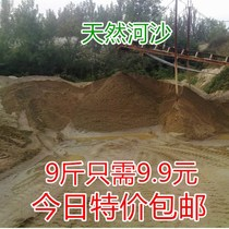 9 pounds of natural river sand fine yellow sand with sand and sand fish tank bottom sand turtle hibernation green sand soil aquarium landscaping