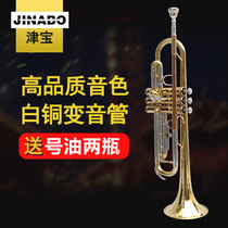 Jinbao JBTR-601 trumpet instrument drop B key silver plated gold beginner playing trumpet