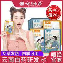 Yunnan Baiyao warm paste baby paste female Palace cold conditioning Wormwood menstrual aunt Palace warm self-heating post waist abdomen