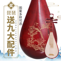 Vatican practice beginners beginners adult childrens lute instrument hardwood Sycamore panel Student Test playing piano