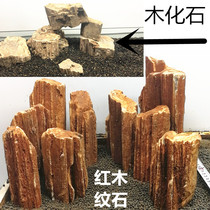 Fish tank landscape stone wood fossil scarlet wood fossil tree fossil wood-printed stone Burmese wood fossil large.