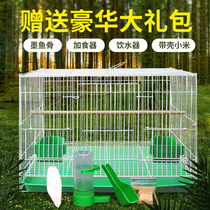 Birdcage pigeon cage tiger skin parrot bird eight brother embroidered eye hundred lingbird cage large super breeding family