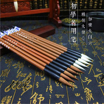 Students Beginners Primer splashed Baiyun calligraphy chinese painting practice cheap large small and medium-sized Kai brush wholesale