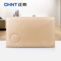 Zhengtai strong electric box home Assembly electric box 20 circuit concealed NEX5-20 circuit Champagne Gold