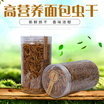 Andy Beautiful Bread worm dried fish feed bird eating yellow powder worm dry hamster net weight 100 g 2 pieces multi-province